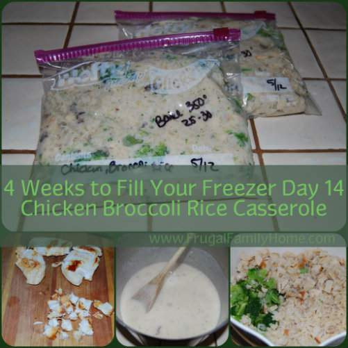 Freezer Friendly Chicken Casserole