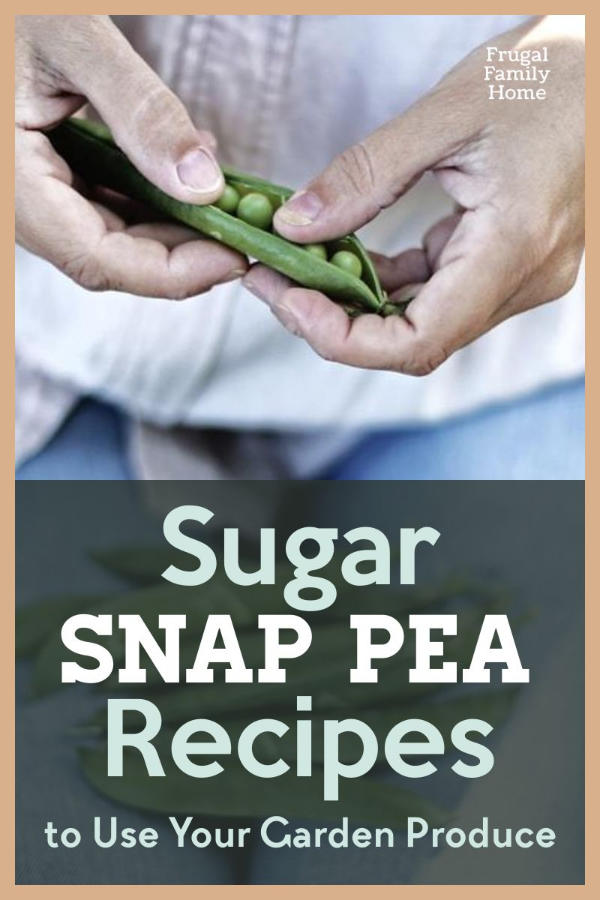 a person holding sugar snap peas.