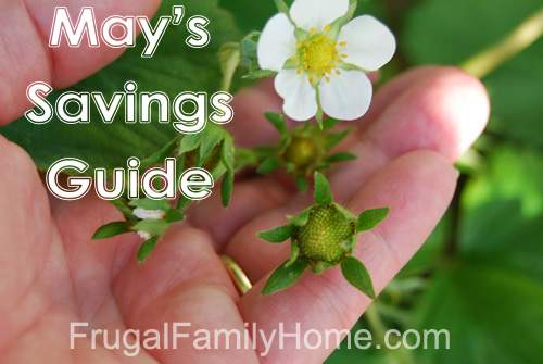 Your Guide to Saving in May