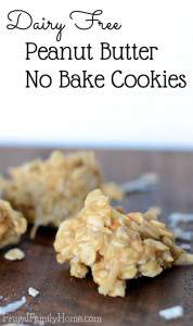 Dairy Free Peanut Butter No Bake Cookies