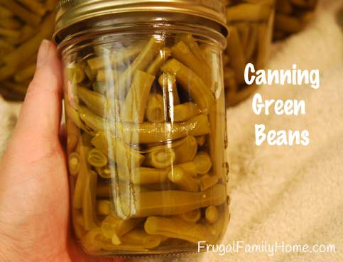Preserving Our Garden Bounty, Canning Green Beans
