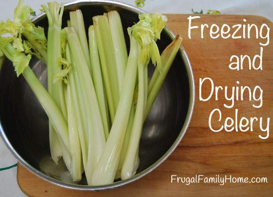 Freezing and Drying Celery