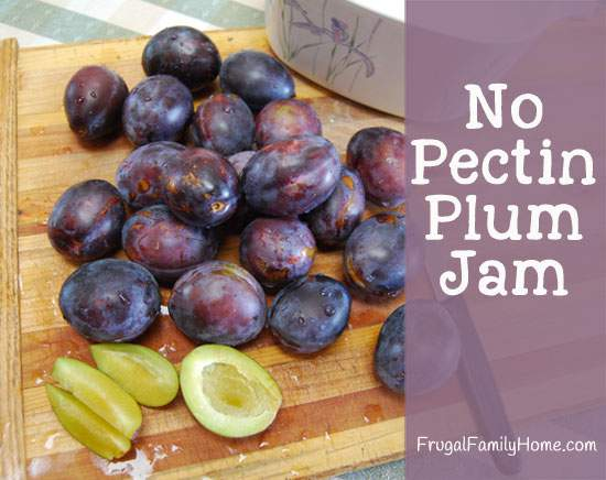 Plum Jam with no added pectin