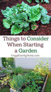 Things to Consider When Adding a Garden