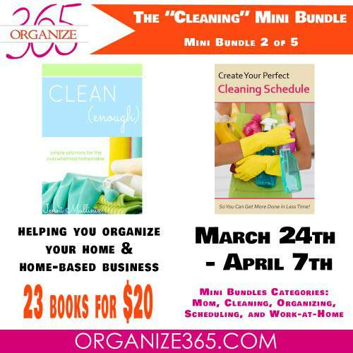 Cleaning ebook Bundle