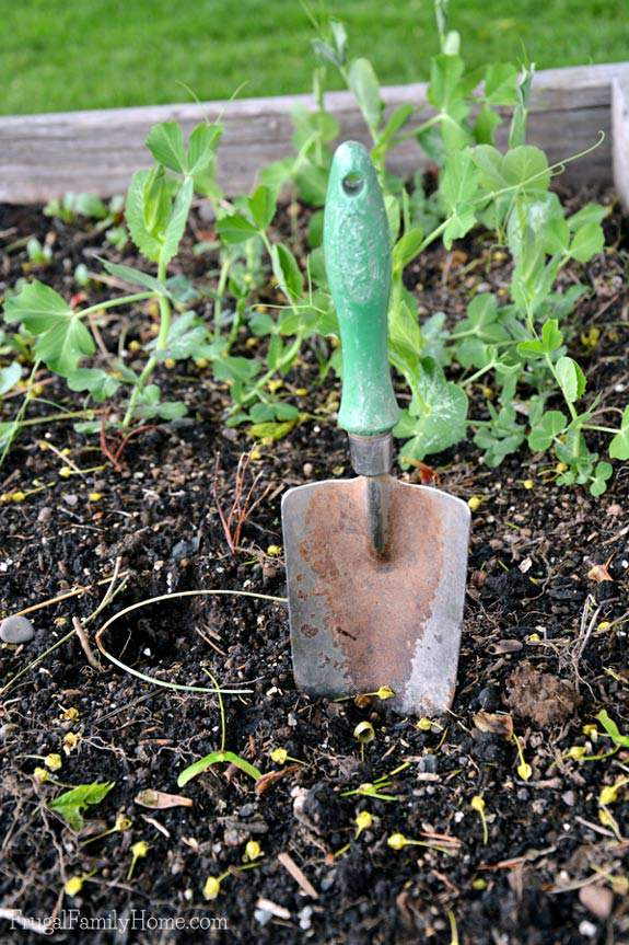 A hand shovel is a must have gardening tool.