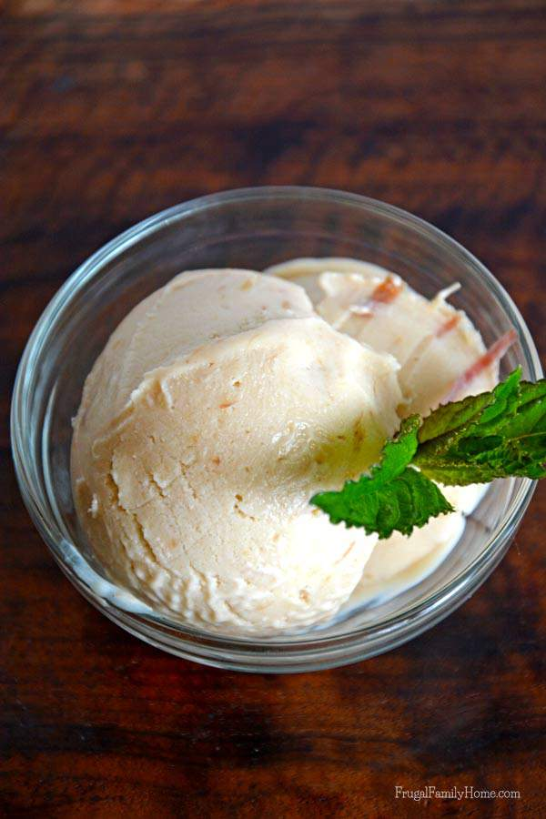 Roasted Rhubarb Dairy Free Ice Cream