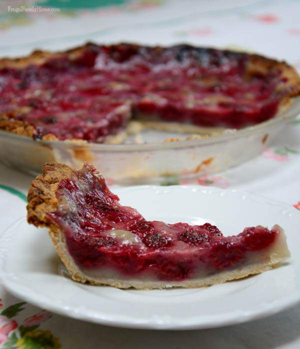 Dairy Free Raspberry cream pie | Frugal Family Home