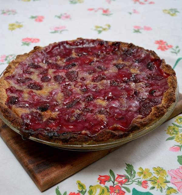 Homestyle Baked Goodness, Raspberry Cream Pie | Frugal Family Home