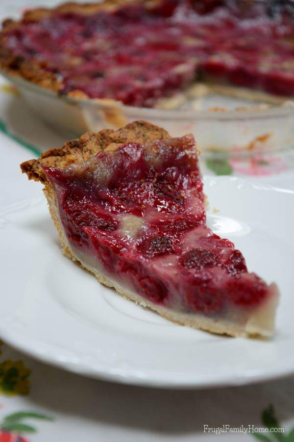Delicious and Dairy free Raspberry Cream Pie | Frugal Family Home