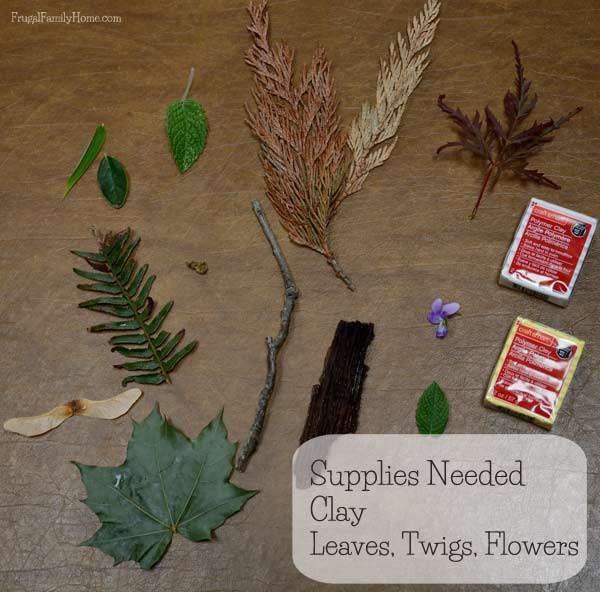 The few supplies you will need to make nature impressions with your kids | Frugal Family Home