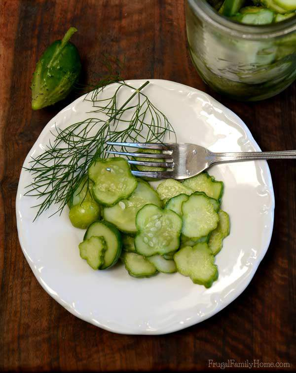 Easy Refrigerator Garlic Dill Pickles