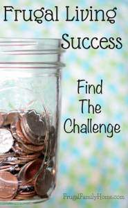Frugal Living Success, Find the Challenge