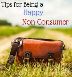 Tips to Being a Happy Non Consumer