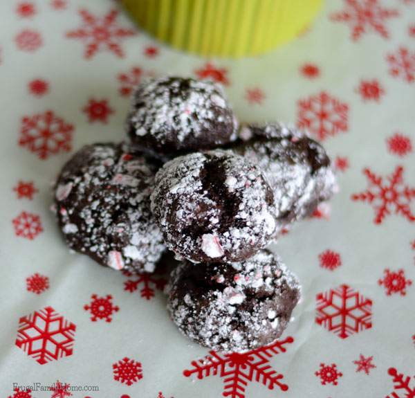 Chocolate Mint Crinkle Cookie Recipe