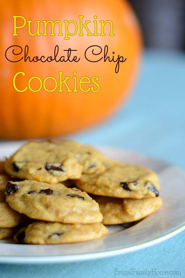 Chewy not cakey chocolate chip cookies with pumpkin | Frugal Family Home