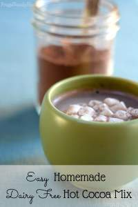 DIY Hot Cocoa Mix with Dairy Free Options