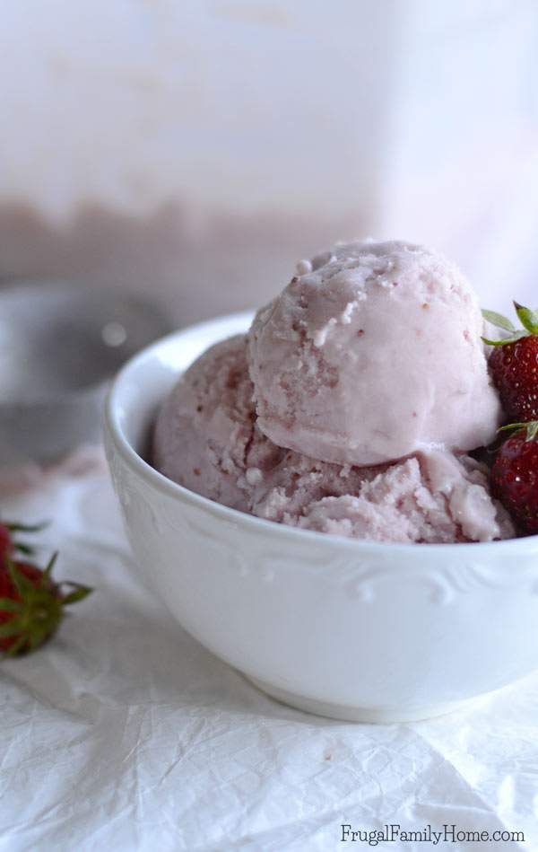 Whenit gets hot in the summer there is no better dessert to have than ice cream. I've gone through a lot of dairy free recipes to find a good one for ice cream. I do believe this is the best strawberry dairy free ice cream recipe around. It's easy to make with a blender and smooth and creamy too.