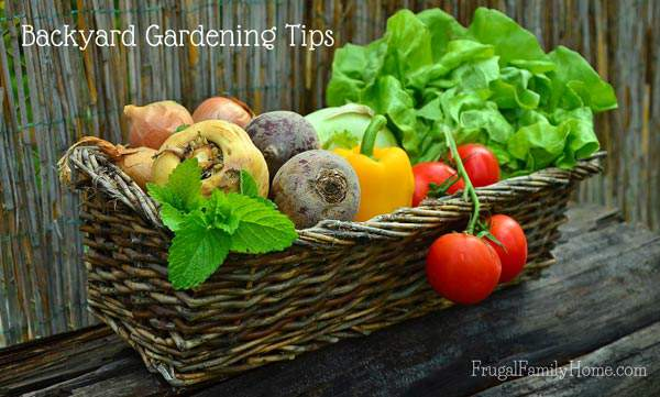 These are great tips for planning your garden. If you are a just beginning to garden you need to read these tips before you start. Having a plan for your backyard garden can make a big difference in how well it grows. I know I learned a few things.
