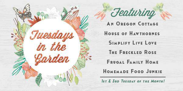 The Tuesdays in the Garden Blog Hop the 1st and 3rd Tuesday of the month.