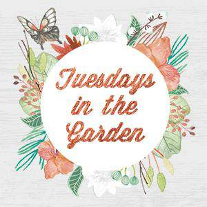 Tuesdays in the Garden, great tips from top garden bloggers