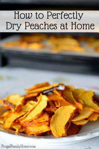 How to Perfectly Dry Peaches at Home