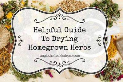 How to dry homegrown herbs.