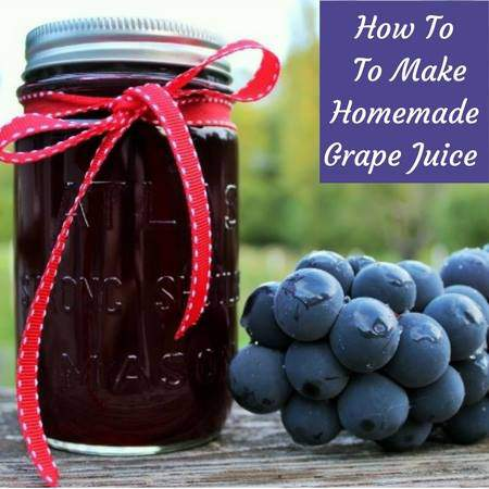 How to make homemade grape juice.