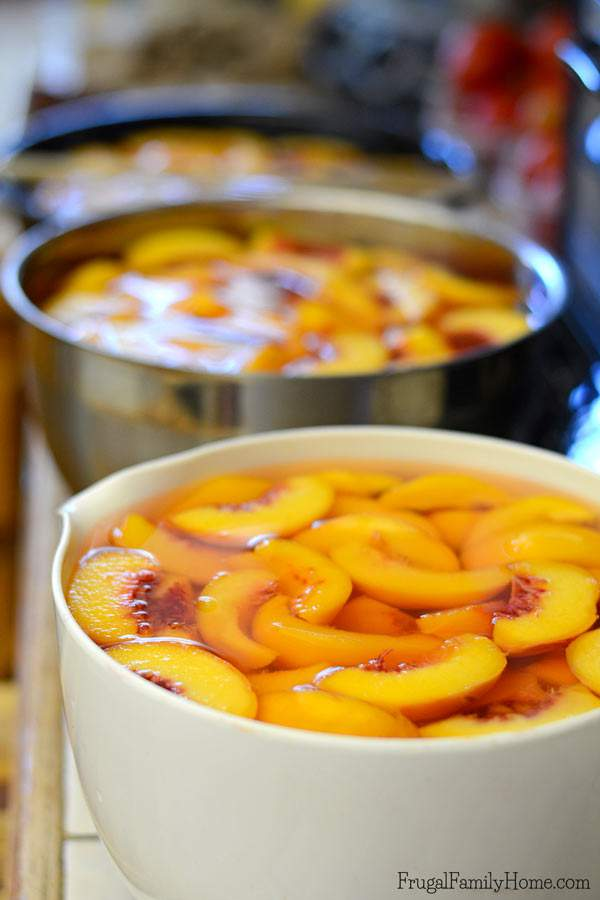 Peaches they are so delicious in season but out of season peaches aren't that great. That's why I love to preserve peaches in the summer when they taste so great to enjoy during those winter months. If you've never canned peaches you are in luck. This is a great step by step tutorial for how to can peaches at home. It not only includes the steps for how to make canned peaches but where to find peaches and what type to use, plus all the products you'll need to can peaches. It's really fairly simple to can summer fruit to use later. Come see how to can peaches.