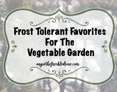 Angie's list of frost tolerant vegetables for the garden.