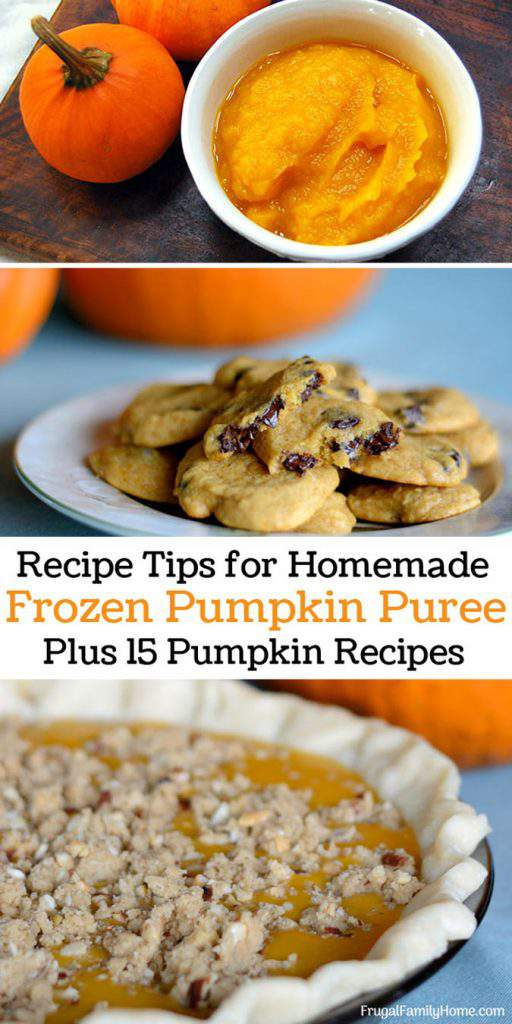 If you've ever had a pumpkin recipe not come out when using homemade pumpkin puree I have a tip that will help. Plus 15 pumpkin recipes just perfect to use your pumpkin puree in. My favorite is the first recipe. All of these recipes would make great fall or Halloween treats.