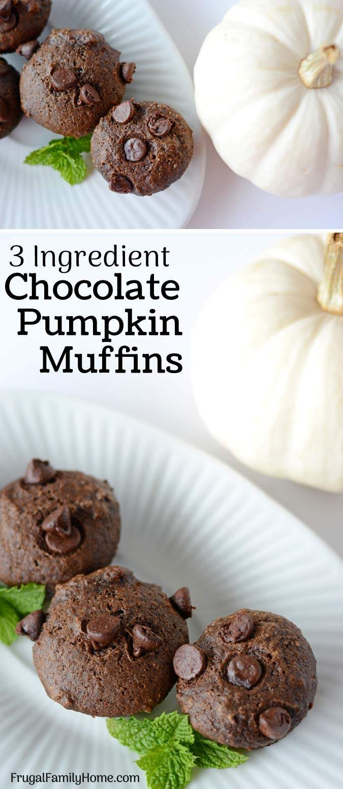 This is an easy and healthy recipe for chocolate pumpkin muffins. If you leave out the chocolate chips they become weight watcher friendly too. I love how easy they are to make and how moist and delicious they always turn out. Come watch the video and see how easy they are to make.