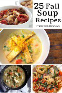 25 delicious fall soup recipes ~ Whether the soup is made on the stovetop or in the slow cooker soups are really a satisfying and frugal meal. Come find a new fall soup you'll want to try.