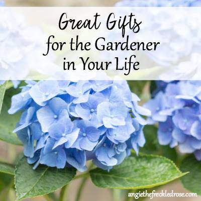 Best Gifts for Gardners