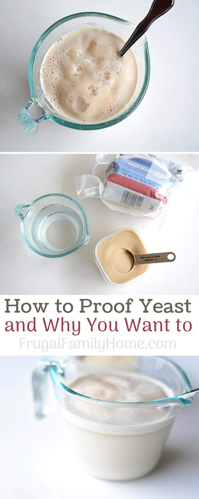 Bread Baking 101, How to proof yeast and why you want to. Learn why it's important to proof when working with yeast. I've included a video too.