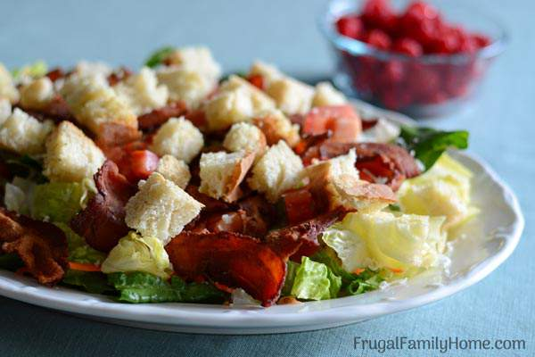 Make this easy BLT salad recipe for your family on a hot summers day. It's quick to make delicious to eat. Even our meat loving family members gobble it up. You can make it healthy too by using turkey bacon instead of regular bacon.