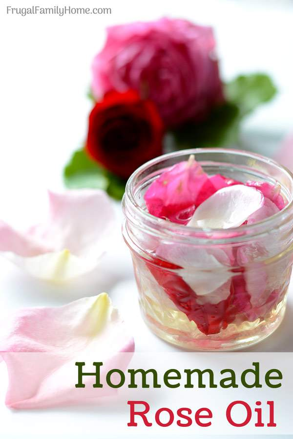How to make homemade rose oil. This is an easy DIY recipe for making your own rose oil at home. It's easier than you might think.