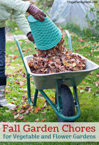 Fall Garden Chores, What to Do Before Winter Comes