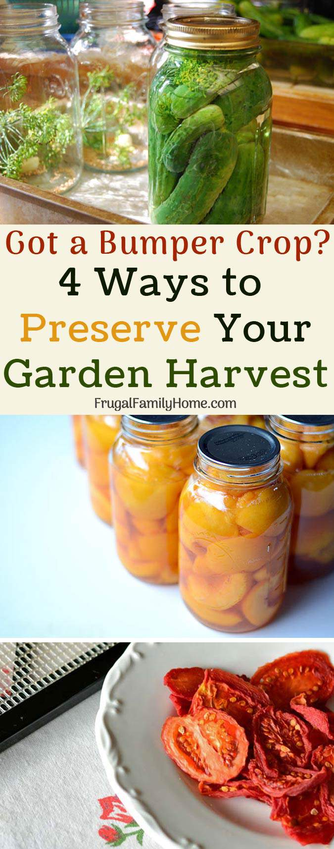4 Practical Ways to Preserve Your Garden Harvest. Got a bumper crop? Preserve your surplus garden harvest with one of these 4 ways.