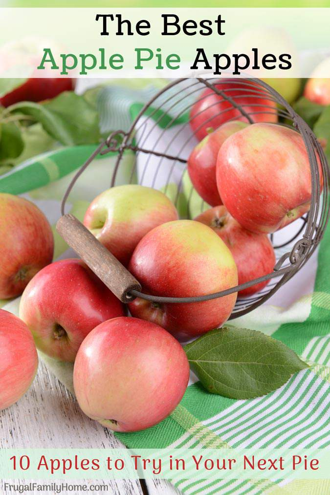 The Best Apple Pie Apples! A great apple pie starts with the right apples. Find the 10 best apples to use in your apple pie recipe to make it the best pie ever.
