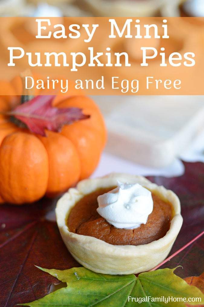 Make these mini pumpkin pies from scratch for Thanksgiving. This is an easy pumpkin pie recipe that is vegan, dairy free, and egg free too. They are easy to make since they are baked in a muffin tin and the filling is quickly mixed up in a food processor too. Everyone will love these individually sized pumpkin pies.