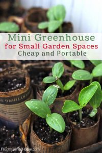 Easy Mini Greenhouse for Small Garden Spaces