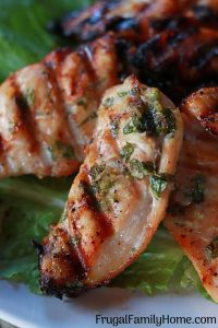 A freezer friendly garlic and parsley chicken up close photo