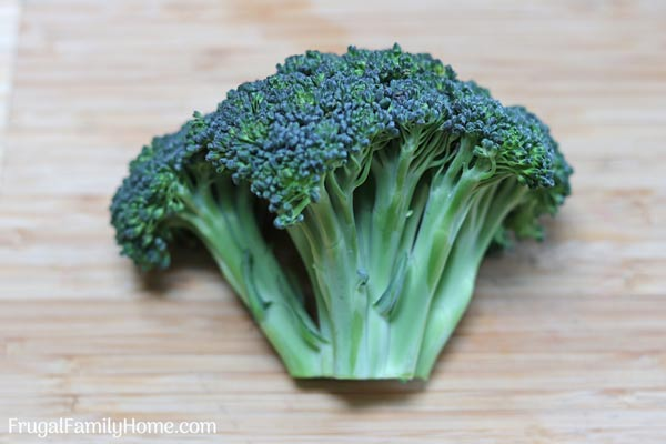 A full head of broccoli ready to be cut up.