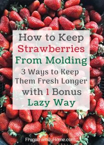 How to keep strawberries from molding 4 different ways.