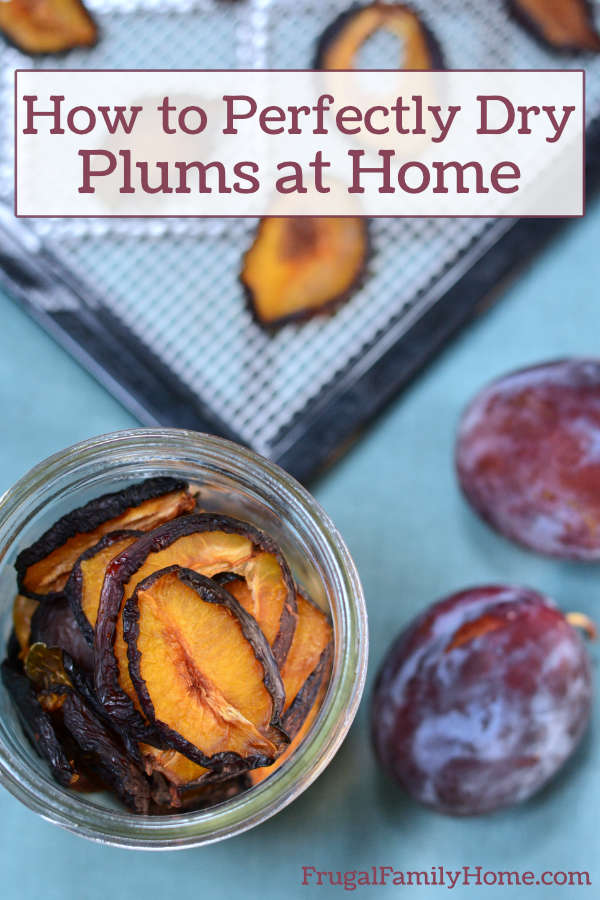 Plums dried and stored in a jar.