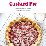 Raspberry Custard Pie Pin